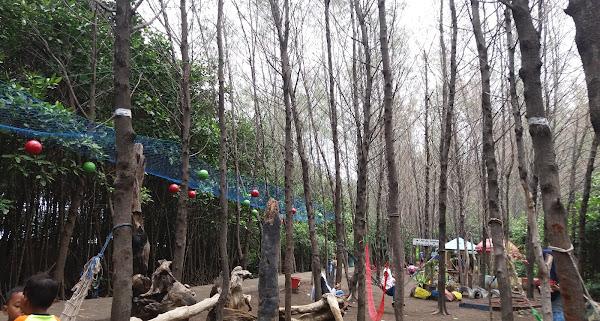 Hutan Mangrove Pantai Alam Indah Tegal