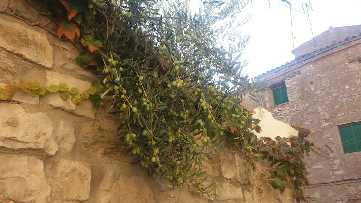 Hostelería De Guimerá Carr. de Vallfogona, 2, 25341 Guimerá, Lérida