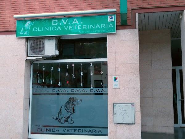 C V A Clínica Veterinaria