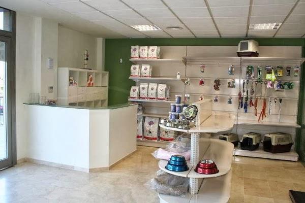 Centro Veterinario Catdog Tomares - Clínica Veterinaria Aljarafe