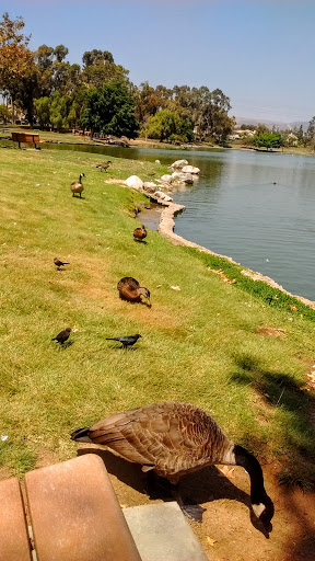 Park «Tri-City Park», reviews and photos, 2301 N Kraemer Blvd, Placentia, CA 92870, USA