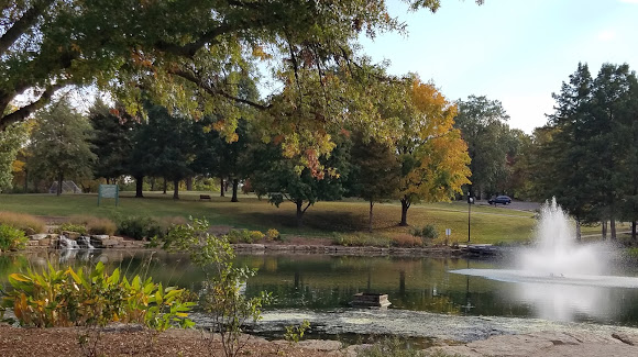 Mid America Tree Experts in St. Louis