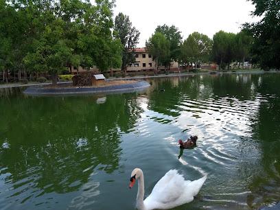 Calamocha Park