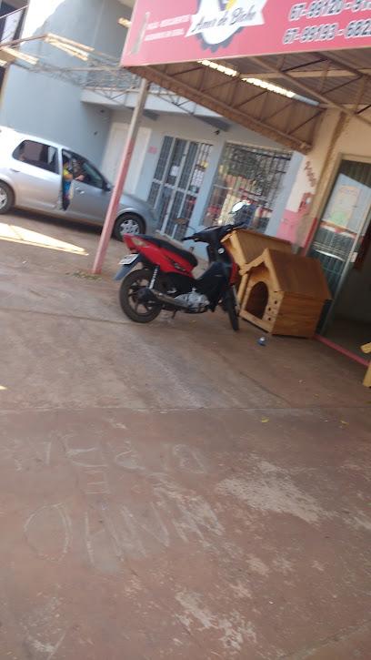 Pet Shop Amor De Bicho