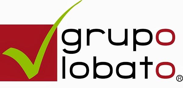 Grupo Lobato - Outsourcing Comercial