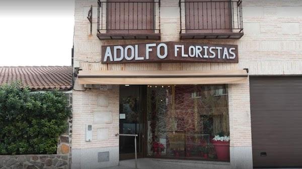 ADOLFO FLORISTAS