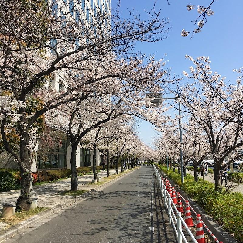 新川公園(隅田川テラス)