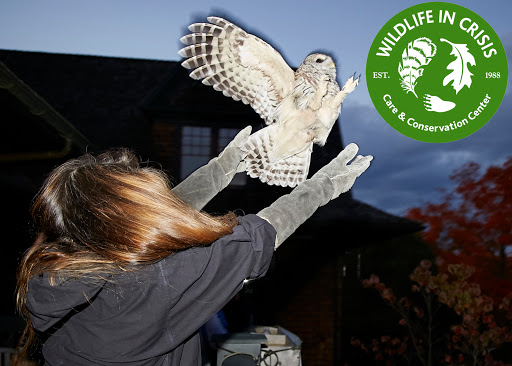 Wildlife Rescue Service «Wildlife In Crisis», reviews and photos, 44 Indian Valley Rd, Weston, CT 06883, USA