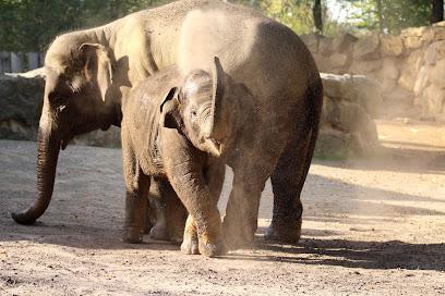 Osnabrück Zoo