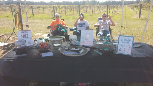 Winery «Strong Tower Vineyard & Winery», reviews and photos, 17810 Forge Dr, Spring Hill, FL 34610, USA
