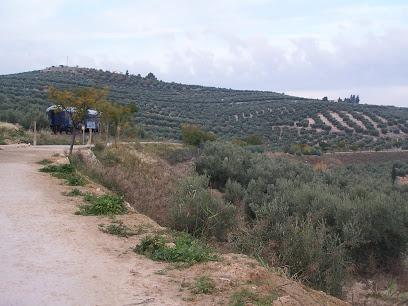 Vía verde del Aceite