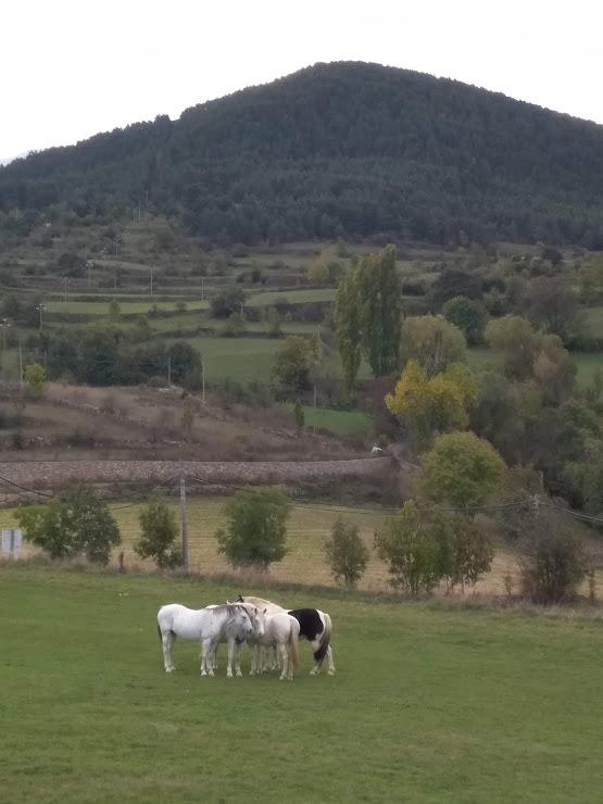 Mirador de Aitana Carrer Major, 8, 25723 Toloriu, Lleida