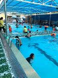 Khu giải trí - Hồ bơi Gia Hưng Phát
