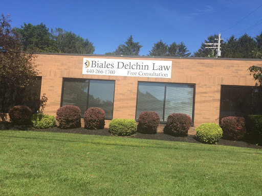 Biales Delchin Law LLC, 7215 Center St, Mentor, OH 44060, Attorney