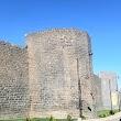 Diyarbakır Kalesi Ve Arkeoloji Müzesi