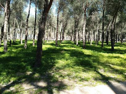 Frailes Park