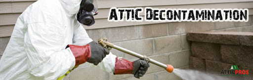 Insulation Contractor «Attic Pros INC», reviews and photos