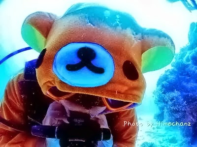 石垣島 クマさんのダイビングショップ