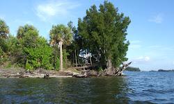 Spoil Island BC47