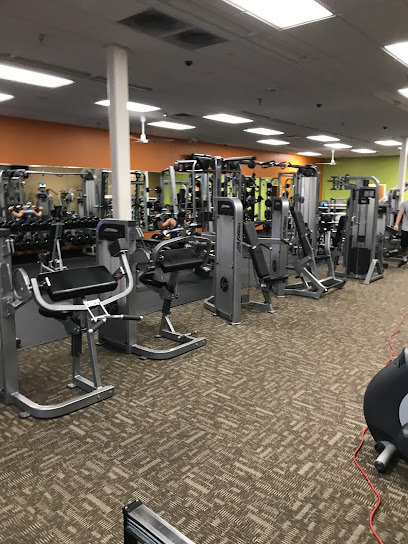 Gym Anytime Fitness