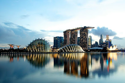 Expat Insurance Singapore