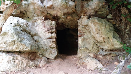 Cova Polida