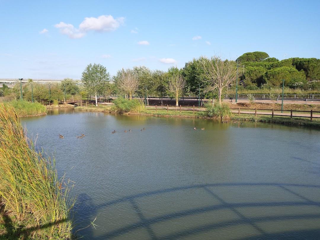 Parco del Cillarese