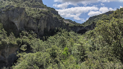 Cova de Les Gralles