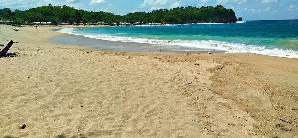 Pantai Tambakrejo PAM TRAVEL
