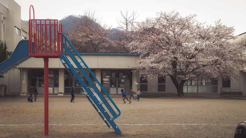 中央 小学校 丸子