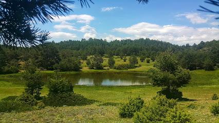 Laguna de la Salobreja