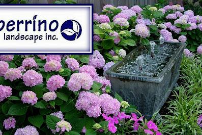Perrino Landscape Inc