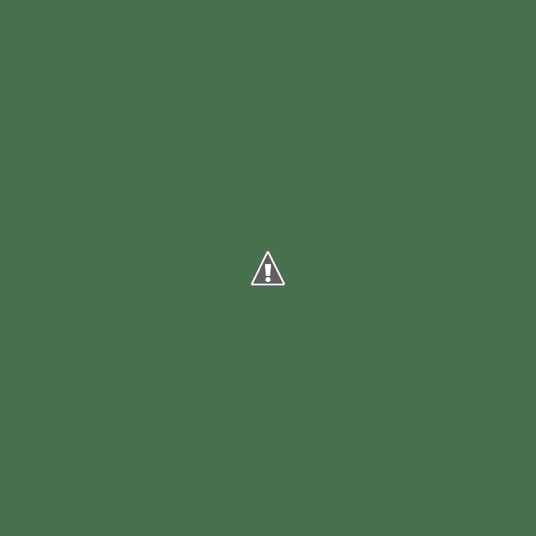 MAINTENANCE RMA & GOJ