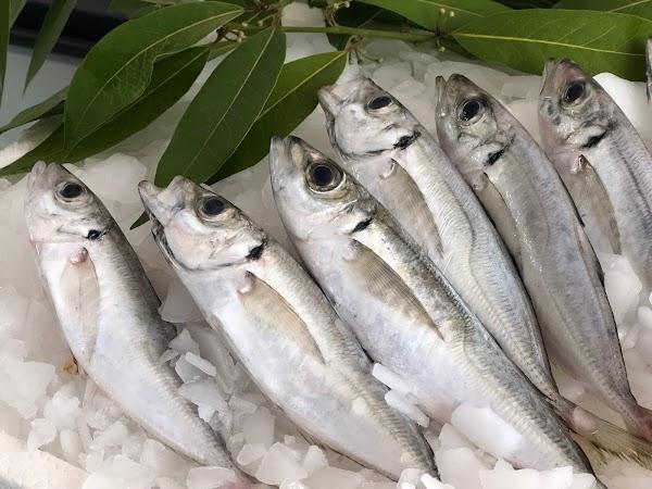 El Mercado del Pescado