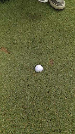 Golf Course «Blue Boy West Golf Course», reviews and photos, 27927 Florence Acres Rd, Monroe, WA 98272, USA