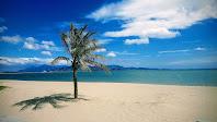 Công Viên Biển Bình Sơn