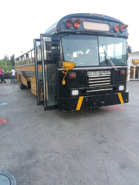 Wally autobus