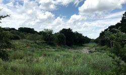 Bauerle Ranch Park