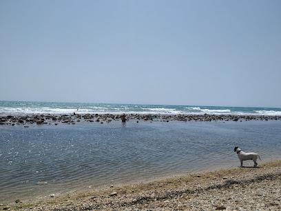 Playa canina del Campello