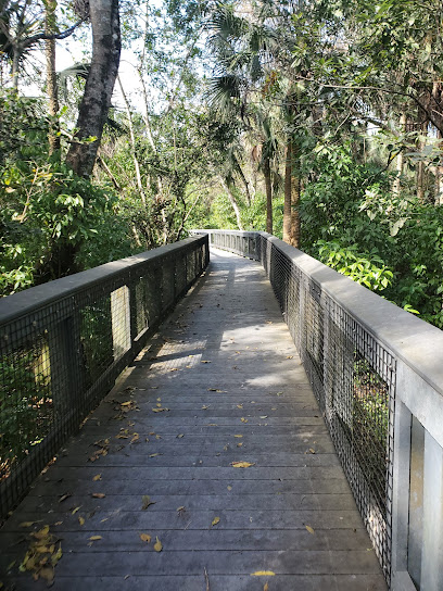 Tall Cypress Natural Area