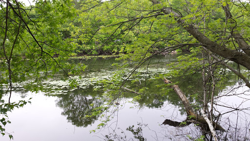 Park «Cummings Park», reviews and photos, 17-21 Lyman Ave, Medford, MA 02155, USA