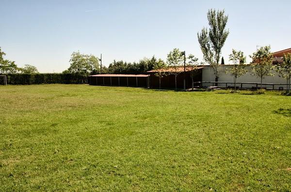 Centro Canino Gufy - Residencia Canina