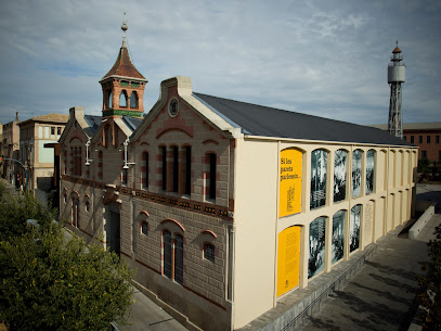 The Cork Museum