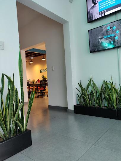 SMARTUP MeXICO Agencia de Marketing Digital en DF