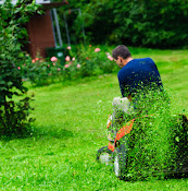 Lansing Real Green Lawn Care Inc – Lawn Mowing Service, Lawn Service, Local Landscaper, Topsoil Landscaping Lansing, MI