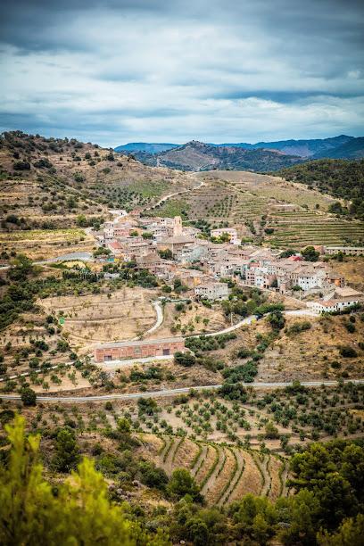 Bodegas Mas Alta S.A