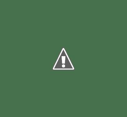 Helios Coletivos e Cargas Ltda - Filial Goiânia