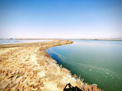 Bair Island State Marine Park
