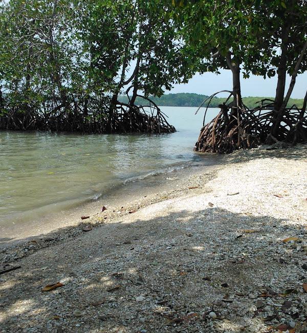 Pantai Ayang-ayang