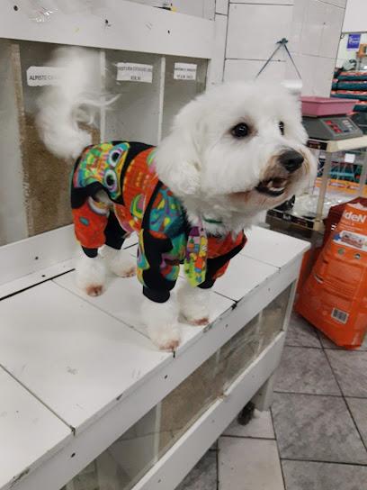 Pet Shop Kilocão